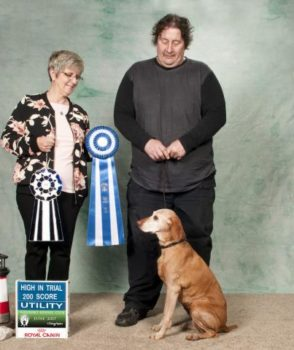 Outstanding Obedience Performances!
